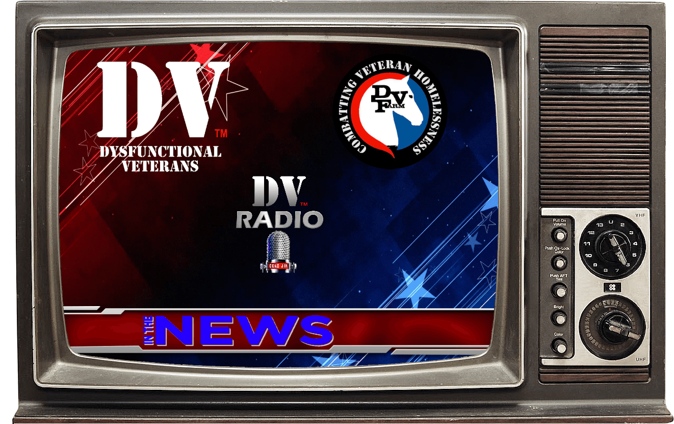DV-In-The-News